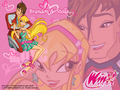 Stella & Brandon's Wallpaper - winx-club-stella wallpaper