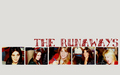 The Runaways @ Autograph Signing - the-runaways wallpaper