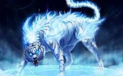 flamin tiger