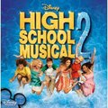 high school musical 2 - high-school-musical-2 photo