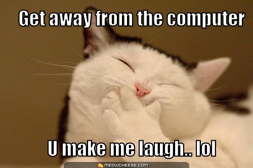 lol! funny cat!