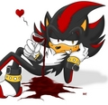 Whine - shadow-the-hedgehog photo