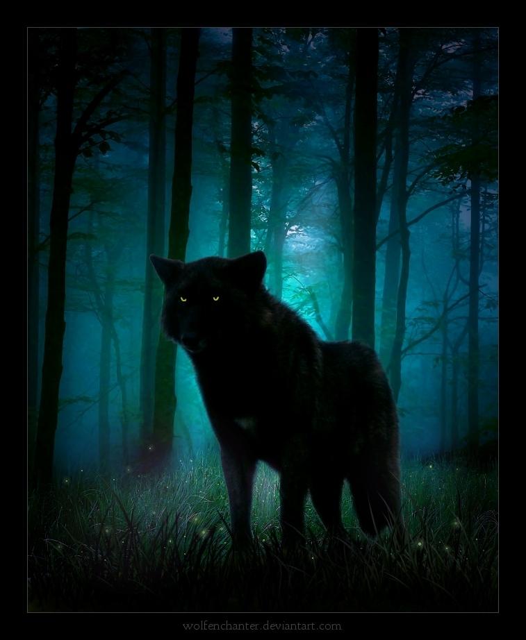 http://images4.fanpop.com/image/photos/18000000/wolf-art-the-anubians-wolf-pack-18046560-757-922.jpg