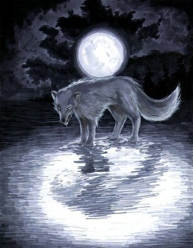 serigala art