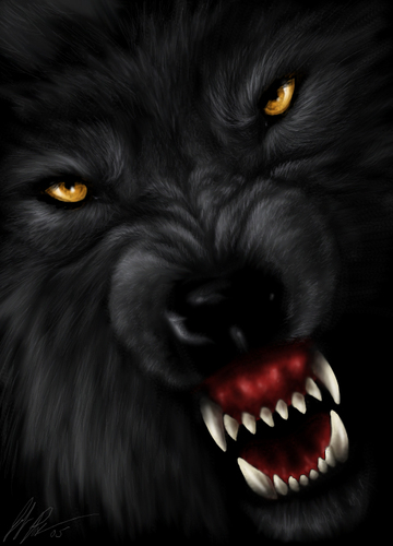 the Anubian's wolf pack wallpaper titled wolf art