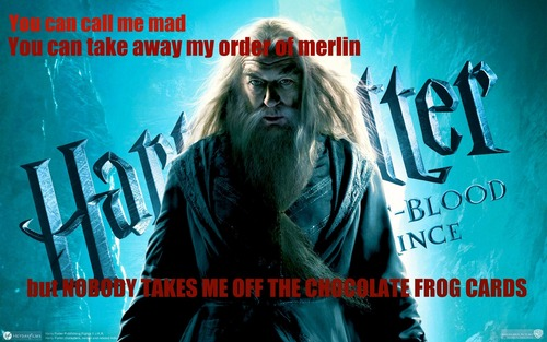 Albus Dumbledore gets mad