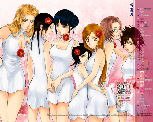 animê bleach wallpaper containing a portrait entitled Bleach Girls