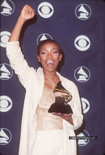 brandewijn, brandy @ The 41st Annual GRAMMY Awards