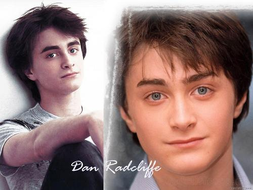 daniel radcliffe fondo de pantalla possibly with a portrait called Dan