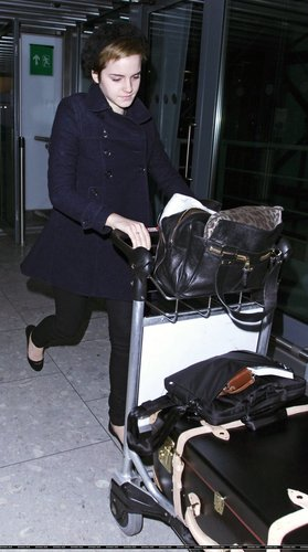 Emma Watson wallpaper called Emma Watson at Heathrow Airport On Friday (December 31st)