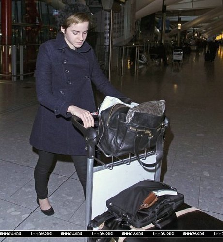 emma watson wallpaper titled Emma Watson at Heathrow Airport On Friday (December 31st)