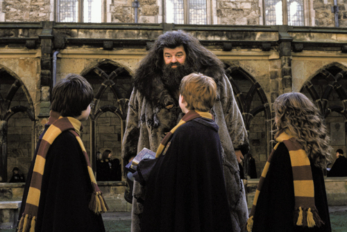 Hagrid &amp; the trio :)) - harry-potter Photo