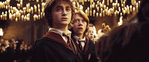 Harry &amp; Ron :)) - harry-potter Photo