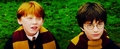 Ron & Harry :))