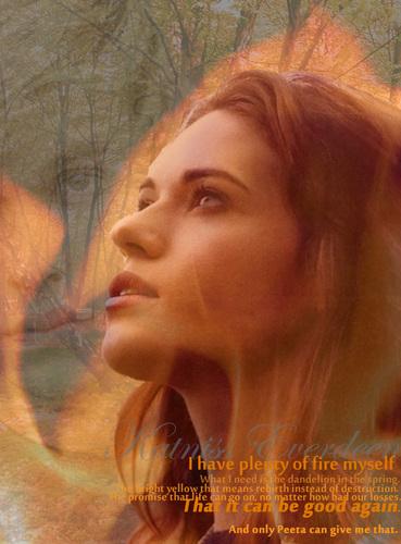 Katniss, Mockingjay