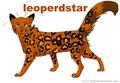 Leoperdstar