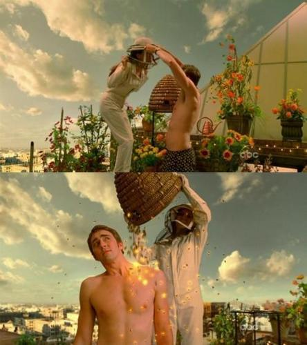 Pushing Daisies wallpaper with skin titled Ned & Chuck