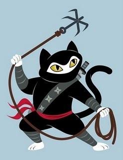 Ninja Kity!