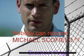 Nobody can replace MICHAEL SCOFIELD !!! Get lost Breakout Kings - prison-break fan art