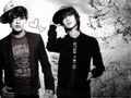 OnTae - shinee wallpaper