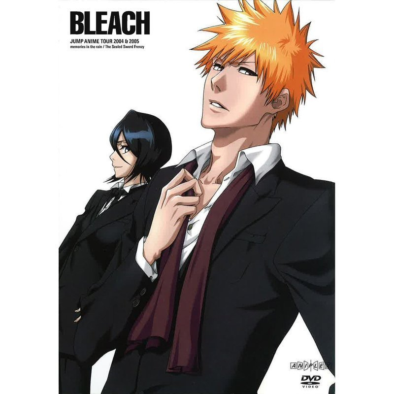 TOP 10 os mais sexy em animes! Rukia-and-Ichigo-bleach-anime-18122055-800-800