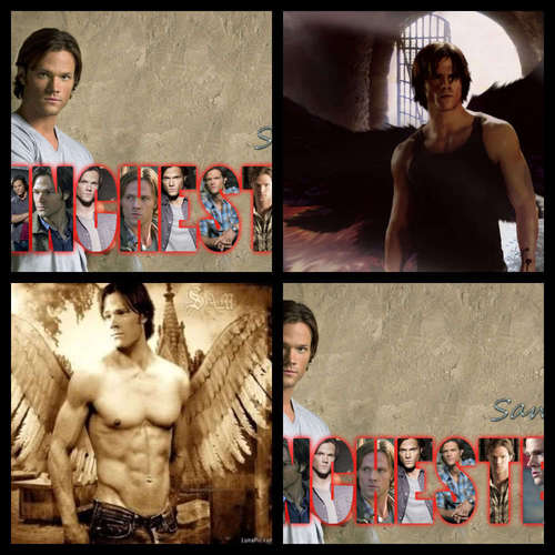 Winchester Girls wallpaper titled Sam Winchester:)