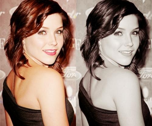 Sophia ♥