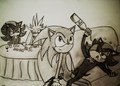 Why we dont let Shadow drink... - shadow-the-hedgehog photo