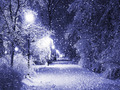 Winter..: magic..: - daydreaming wallpaper