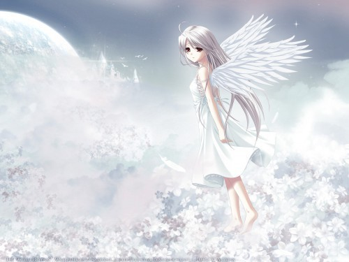 anime angels images angels wallpaper and background photos 18197114