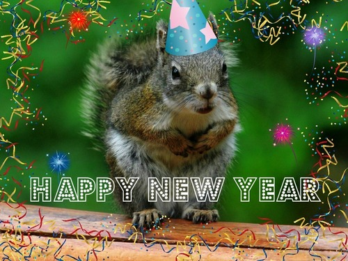 happy new Jahr from the squirrell