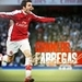 icons - cesc-fabregas icon