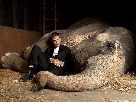 new stills - water-for-elephants Photo