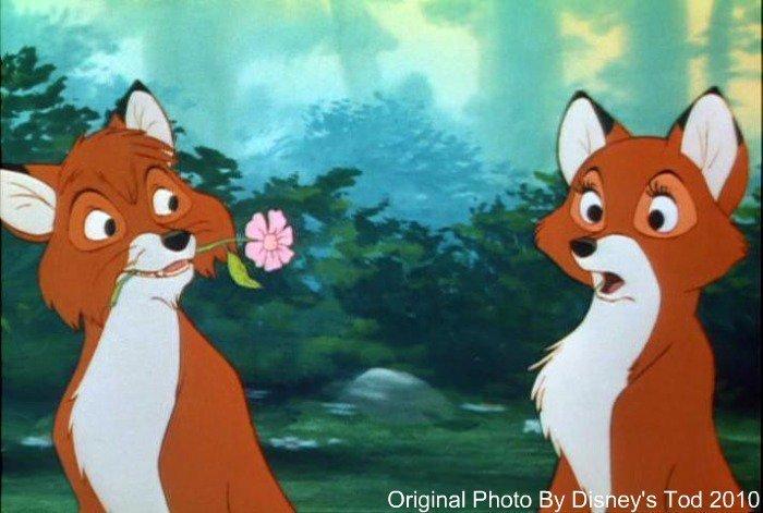 tod the fox高清图片