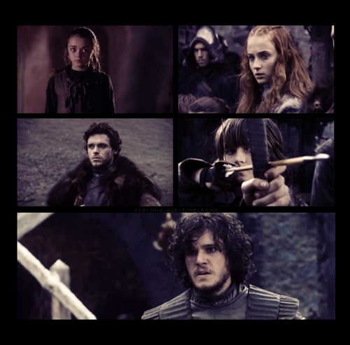 Arya, Sansa, Robb, & Bran Stark & Jon Snow - game-of-thrones Fan Art