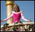 Aurora from the Disneyland parade - princess-aurora photo