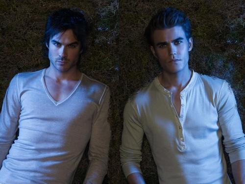 Damon and Stefan Salvatore wallpaper possibly containing a portrait called Brothers