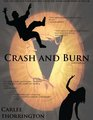 Crash and Burn (Fanfiction Book Cover) - tiva-fan-fiction fan art