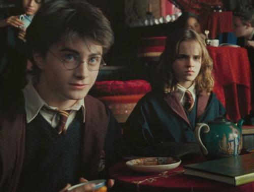 Harry & Hermione :))
