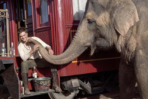 HQ Water For Elephants pics