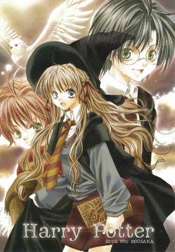 funkyrach01 wallpaper entitled Harry, Ron & Hermione [Anime]