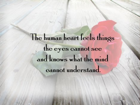 heart quotes photo 18248911 fanpop