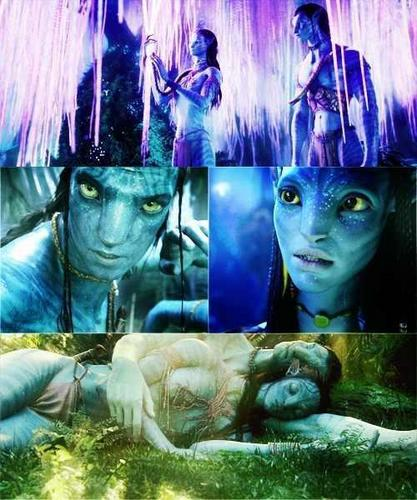Avatar Jake: Avatar Images JAKE & NEYTIRI Wallpaper And Background