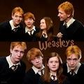 OOTP - the-weasley-family fan art