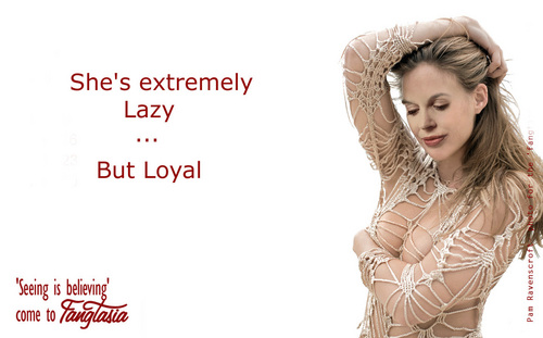 True Blood wallpaper with a portrait called Pam - lazy but loyal