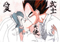 Vegeta X Bulma-the Wedding ciuman