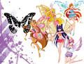Winx wallpaper