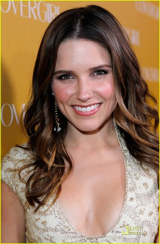 Sophia Bush wallpaper containing a portrait entitled sophia bush - cover girl