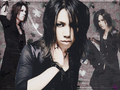 Aoi wallpaper by Yune - the-gazette wallpaper