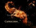 Astrology on Fire